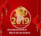 Công ty CP ĐT NL XD TM Hoàng Sơn chúc mừng năm mới xuân Kỷ Hợi - 2019